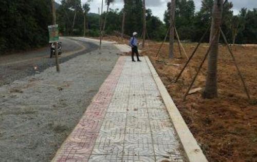 Đất nền nằm ngay MT đường Cây thông ngoài, NTT, SHR, CHỉ với 14tr/m2