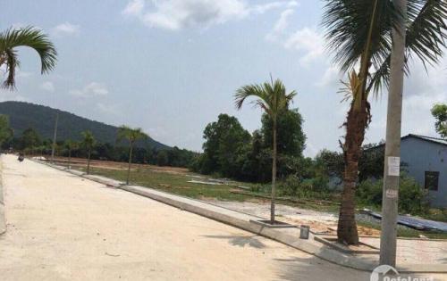 Bán đất mặt tiền Cây Thông Ngoài , ngay ngã 3 Nguyễn trung Trực