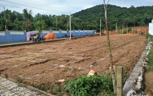 Đất mặt tiền Vincity DT 131m2 SHR - XDTD khu dân đông đúc, đầu tư sinh lời cao