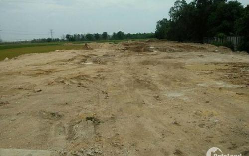 Đất nền sinh lộc cho nhà đầu tư, gần Chợ Bà Hom, Bình Tân, SHR, 1 tỷ 4, LH 0984. 345. 986
