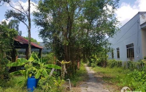 Chính chủ cần bán 2400m2 đất vườn tại Quang Trung, Rạch Giá, KG. Gọi 0919.804.806 - Mr. Trí