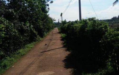 Nhận đặt cỌC đất nền trung tâm Xã Hưng Lộc . Đồng Nai