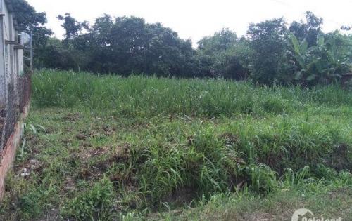 cần bán đất nền thổ cư 100m2 gần kcn trảng bàng tây ninh