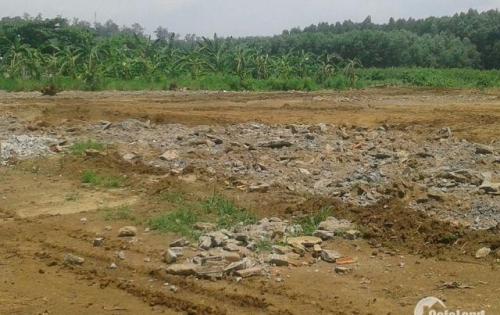 Đất Nền Cực Hot, Thiện Tân, Vĩnh Cửu, diện tích 100m2, giá bán 250tr