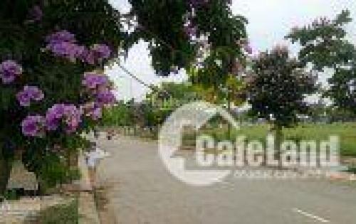 Bán đất KĐT mới Nam Vĩnh Yên, dt 300m2 hướng Đông Nam