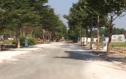 Tam Phước khu đô thị hiện đại bậc nhất Biên Hòa chỉ 800tr