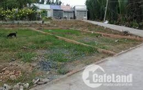 Bán đất thổ cư gấp, diện tích 65m2,đường 2 ô tô vào tận đất tại Long Biên: Lh 01662841326.