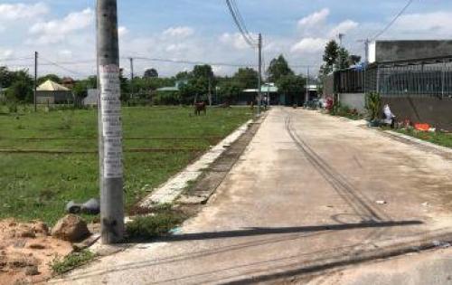 Hot! Mở bán dự án đất thổ cư xã Long Phước, sổ riêng từng nền, hạ tầng hoàn thiện