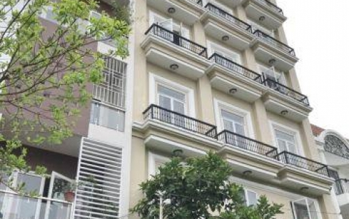 Bán căn hộ dịch vụ mặt tiền đường số Phường Tân Quy Quận 7