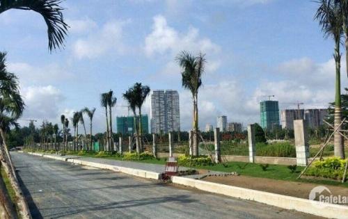 Nuối tiếc cả mùa khi không mua đất tại Bình Tân, Ngân Hàng phát mãi,cách AEON 4 phút .