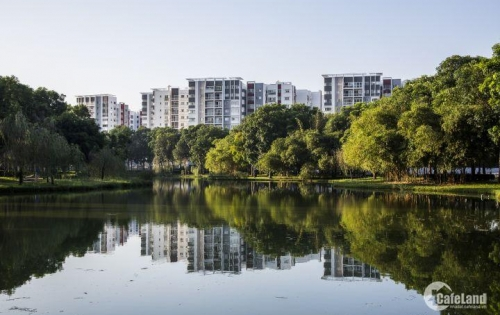 Hiện tôi cần sang gấp căn hộ D9 _05 khu Emerald dự an Celadon City Tân Phú. ai có nhu cầu liên hệ ngay để có giá tốt