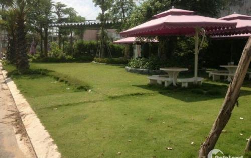 Bán đất nền tại Lái Thiêu, thị xã Thuận An, tỉnh Bình Dương