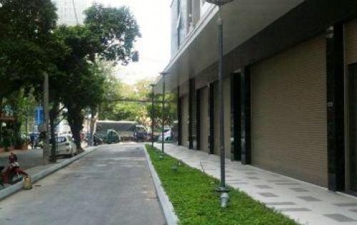 Cho thuê lô shop 97m2, chung cư The Botanica,104 Phổ Quang,Q.Tân Bình,hoàn thiện,giá 40 triệu/tháng
