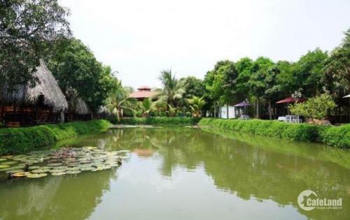 Mở bán đất nền tại Khu đô thị sinh thái Singapore đẹp như tranh