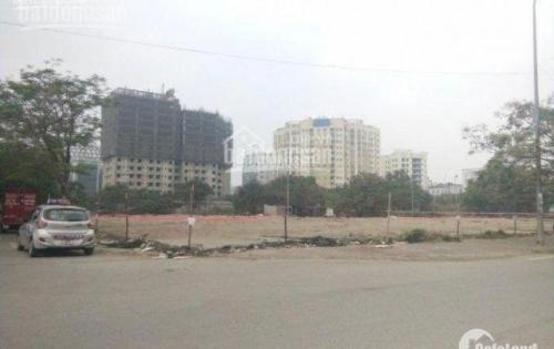 Bán đất đấu giá 150m2 khu D7 khu đô thị Dịch Vọng, CG Lh 0946.58.98.97