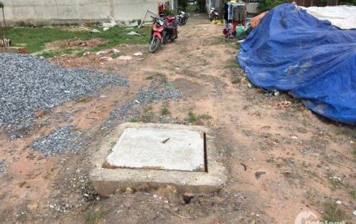 Bán đất đường Số 5A, Ấp 5, Vĩnh Lộc B, Bình Chánh (đối diện UBND VĨnh Lộc B)