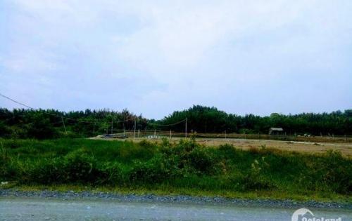 Bán lô đất 18000m2  Cần Giờ chỉ 1,6 triệu/m2.