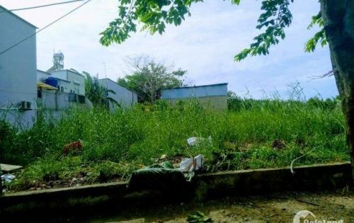 Bán đất xã Nhơn Đức huyện Nhà Bè 2 lô liền kề 110m2 thổ cư 2,5 tỉ