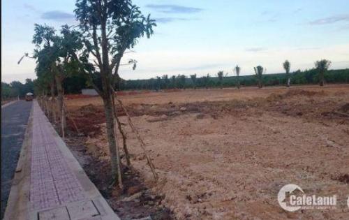 bán đất dự án 1/500 khu dân cư Long Đức, Long Thành, Đồng Nai