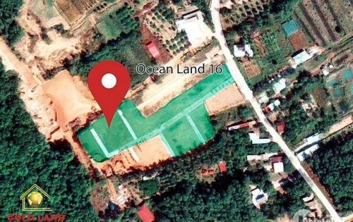 Ocean land 16 - diện tích 100m2 - ngay mặt tiền đường cây thông ngoài