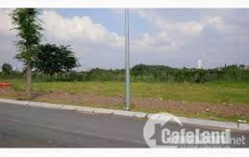 Cần bán đất nền sổ đỏ khu dân cư hiện hữu đường phạm hữu lầu, ngay cạnh phú mỹ hưng , vị trí đẹp, giá tốt