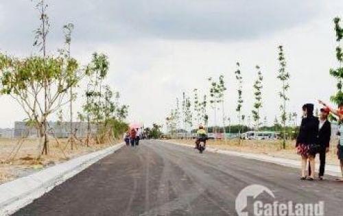 đất dự án MT đường Đinh Đức Thiện,Bình Chánh,tp hcm