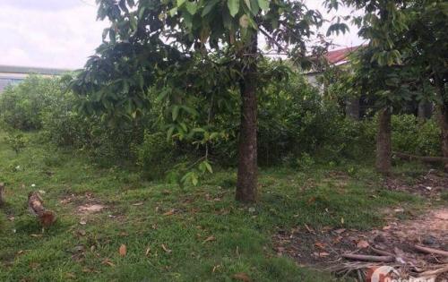 chính chủ bán gấp lô đất mặt tiền giá rẻ gần trung tâm Trảng Bàng Tây Ninh