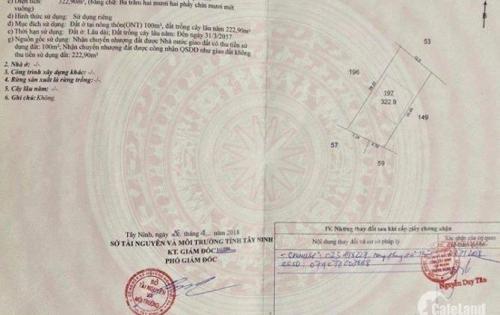 Cần tiền bán gấp đất thổ cư giá rẻ gần Khu Công Nghiệp Trảng Bàng Tây Ninh