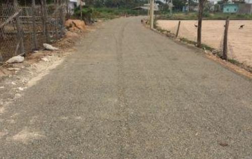 Đất trong KDC sầm uất thị trấn Liên Hương (có sổ)