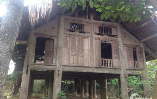 Bán nhà sàn Cổ Đông, Sơn Tây, Hà Nội