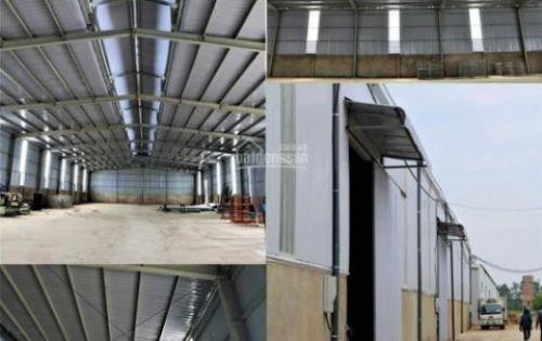 Kho - xưởng tiêu chuẩn công nghiệp diện tích 700m2 Hà Nội