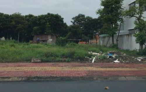 Bán đất giá rẻ 5x20 KCN Mỹ Phước gần chợ, sổ riêng 100% đất thổ cư