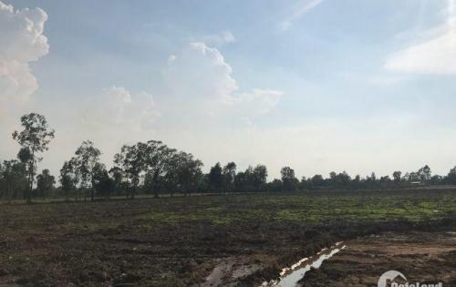 Đất ven sông Bến Lức, Long An giá tốt 1,5tr/m2. LH: 0902.924.366
