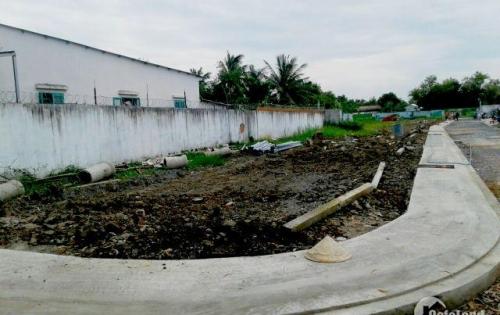 đất đường Đinh đức thiện, xã Bình Chánh 84m2 SHR