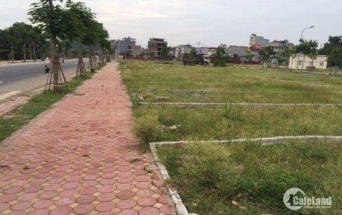 Đất Cần Giuộc, ngay khu công nghiệp Tân Kim, xây trọ thu nhập 15 triệu/tháng, giá 595 triệu