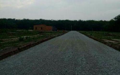 Đất lành chim đậu-Đất nền Minh Hưng-Chơn Thành-Bình Phước. LH:0963097087