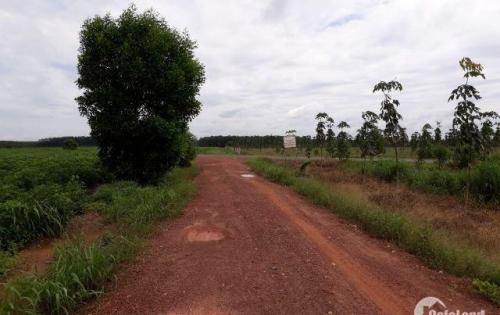 Phân khúc đất nền giá rẻ đang được đầu tư mạnh – Đất nền Bình Phước. LH: 0963097087