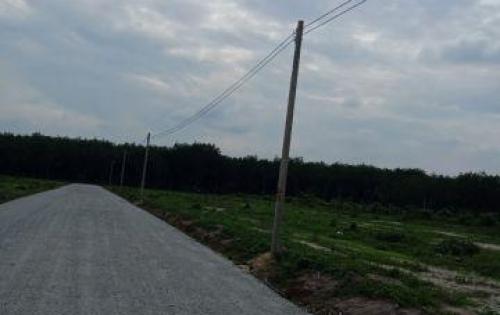Đất nền Chơn Thành Bình Phước,giá 275tr ền,diện tích 5x42m,cực kỳ rẻ, SHR