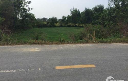 Bán đất thổ cư Long An thổ cư giá rẻ tại Basa Gò Mối có DT 32*45m2 giá 270tr/m ngang