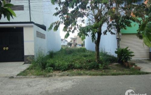 Cần bán đất đường Tân Liêm,Phong Phú,Bình Chánh,SHR