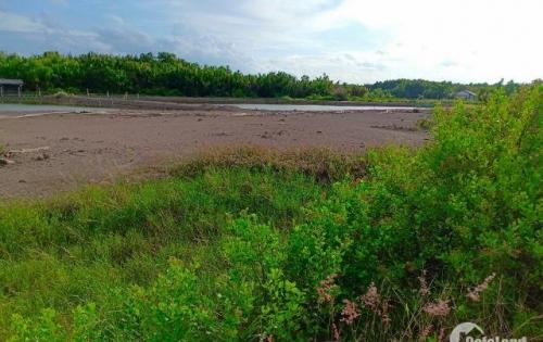 Cần bán đất mặt tiền Doi Lầu xã Lý Nhơn, huyện Cần giờ diện tích: 18000m2