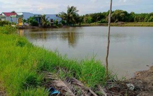Cần bán đất mặt tiền Doi Lầu xã Lý Nhơn, huyện Cần giờ diện tích: 8600m2