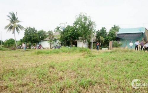 Chị Thắm xinh có miếng đất to ở Củ Chi cần bán gấp để đi Mỹ định cư gọi   O162.941.0703