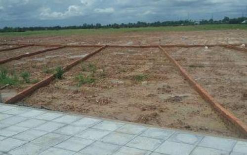 Bán đất gần chợ hóc môn , thổ cư 100%, xây dựng tự do. có sổ hồng.