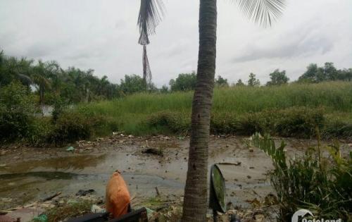 Chính chủ bán đất vườn Nhà Bè, Nguyễn Bình, xã Phú Xuân.