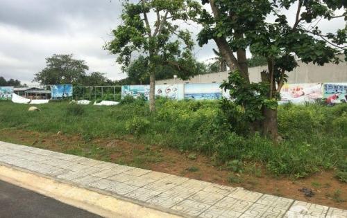 Đất ngay KCN Phước Bình, Long Thành, Đồng Nai giá 340 triệu/nền