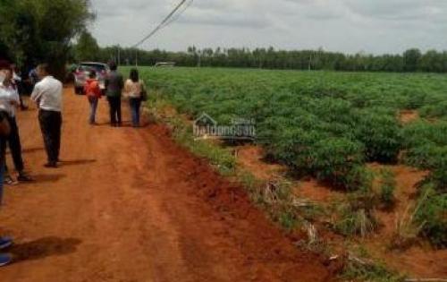 Bán đất nền gần KCN Phước Bình, giá 290tr/nền. Sổ riêng thổ cư 100%.