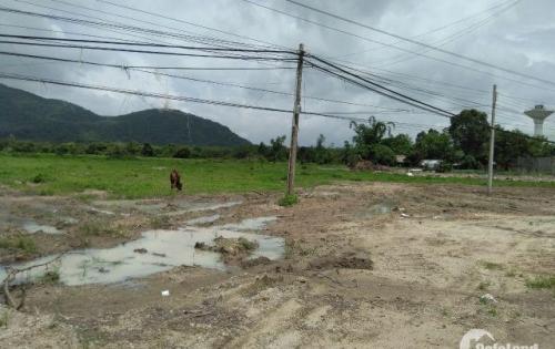 Khu đất vàng Phước Bình Long Thành, liền kề 3 KCN lớn Gò Dầu-Phước Bình-Mỹ Xuân