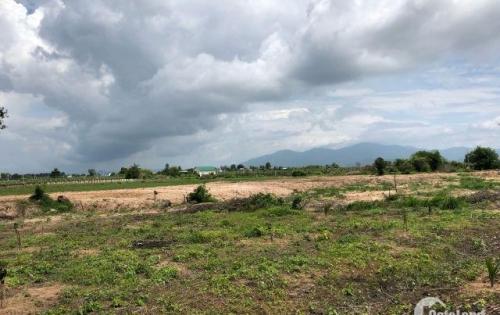 Đất mặt tiền đường nhựa gần KCN Phan Thiết, sổ hồng riêng