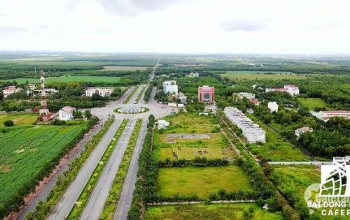 Khách hàng chen chân mua đất nền ở Long Thành - Đồng Nai